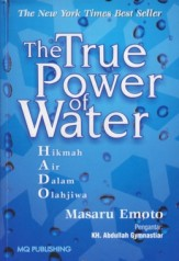 the_true_power_of_water_260