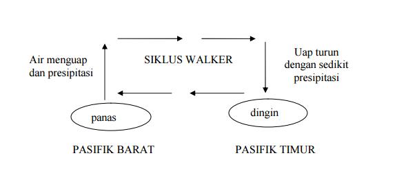 siklus-walker
